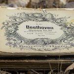 ベートーベンハウス | Beethoven Haus