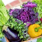 季節のめぐみをいただこう! ドイツ7月の野菜と果物
